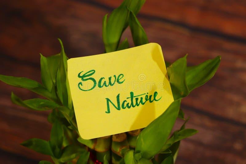 Sauvez le texte de la nature, connectez-vous à une belle plante verte photo stock