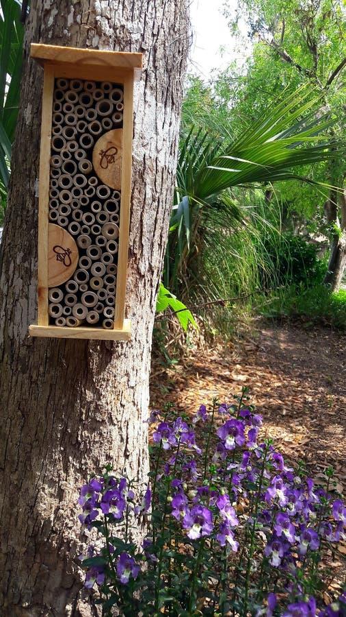 Sauvez les abeilles Plantation des fleurs pour la pollinisation d'abeille et des habitats de maison pour l'hibernation image libre de droits