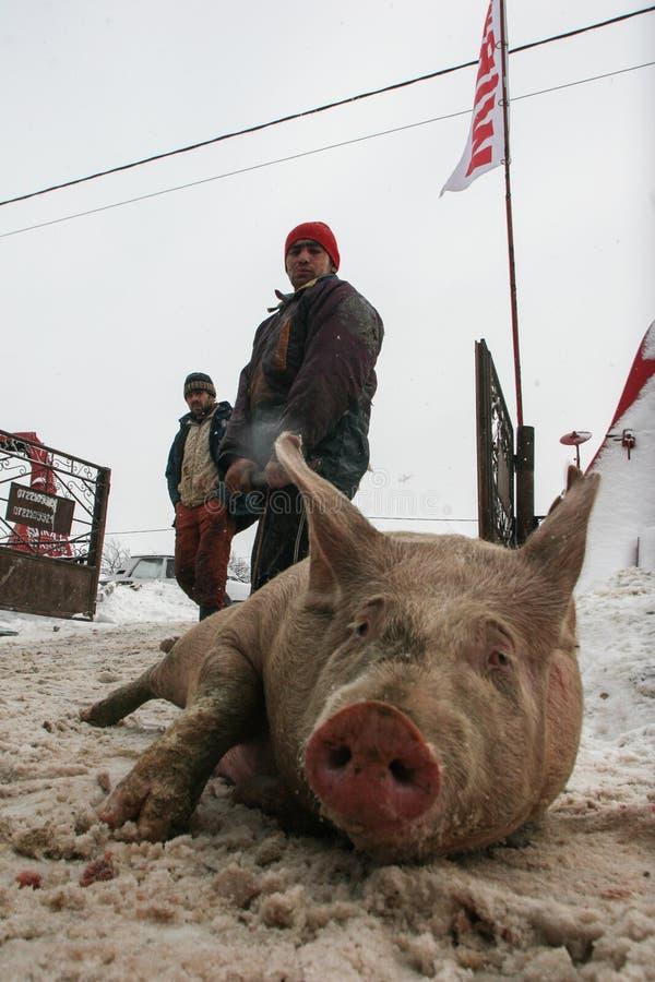 Sauvez-vous le marché de l'hiver photos libres de droits