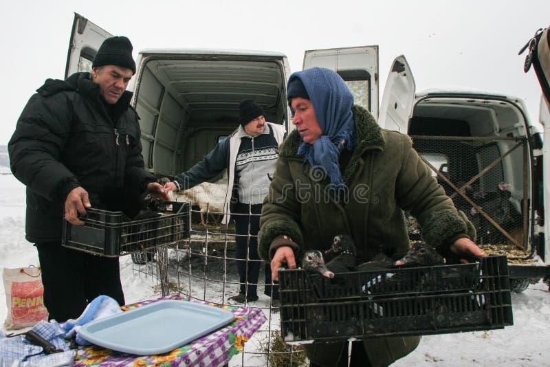 Sauvez-vous le marché de l'hiver images libres de droits
