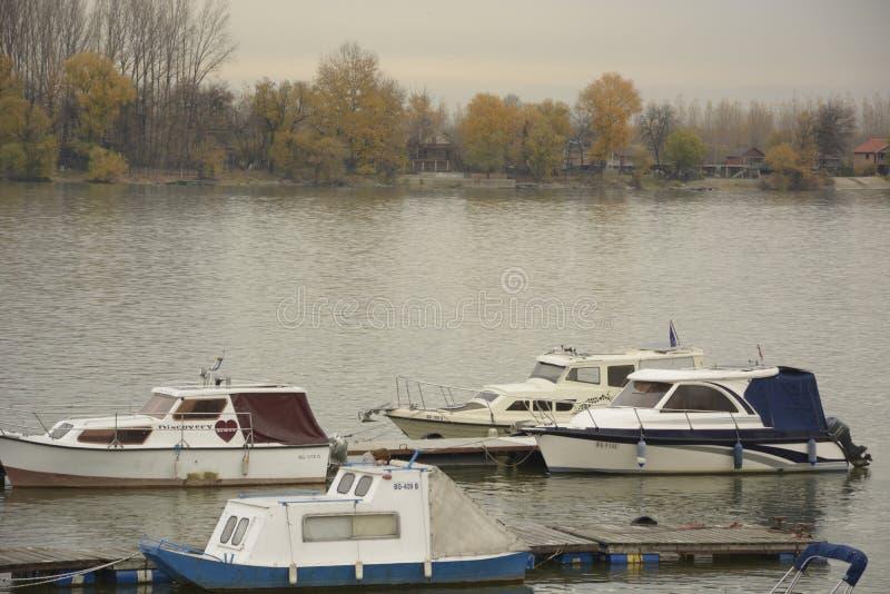 Sava rzeka obrazy stock