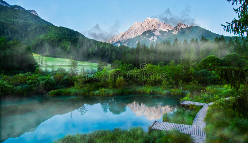 Sava spring, Zelenci, Slovenia. Sava spring in Zelenci near Kranjska gora town in Slovenia stock image