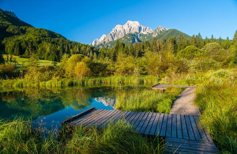 Sava spring, Zelenci, Slovenia. Sava spring in Zelenci, travel destination in Slovenia, Europe royalty free stock images