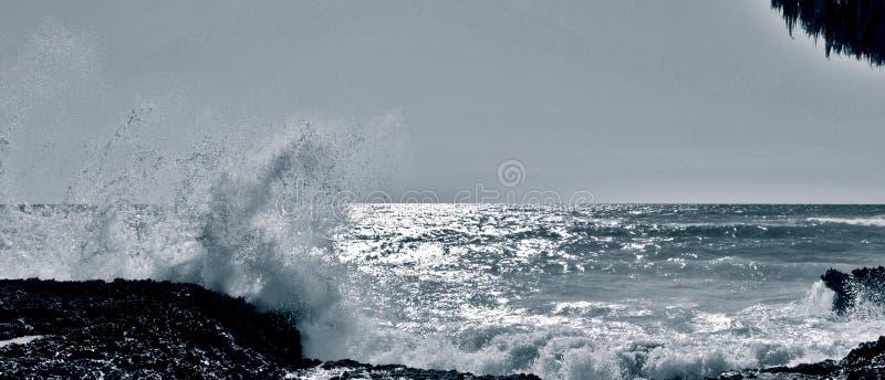 Savage Sea/mars Salvaje images stock