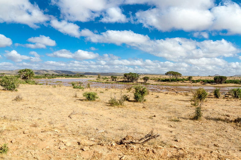 Savana landscape in Africa royalty free stock images