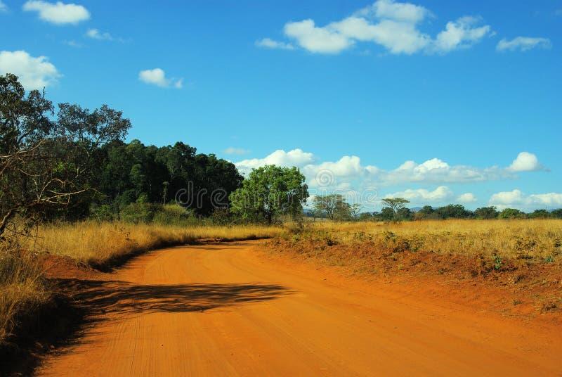 Savanna, South Africa. Safari through savanna fields in South Africa stock photography
