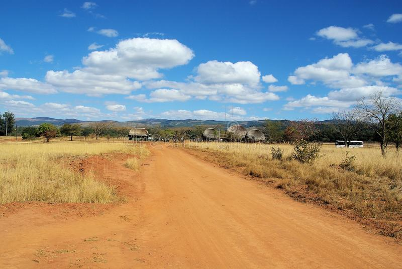 Savanna. Safari through savanna fields in South Africa stock photo