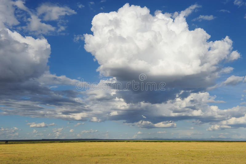 Savanna. Dramatic cloud and the vast grassland of savanna stock images