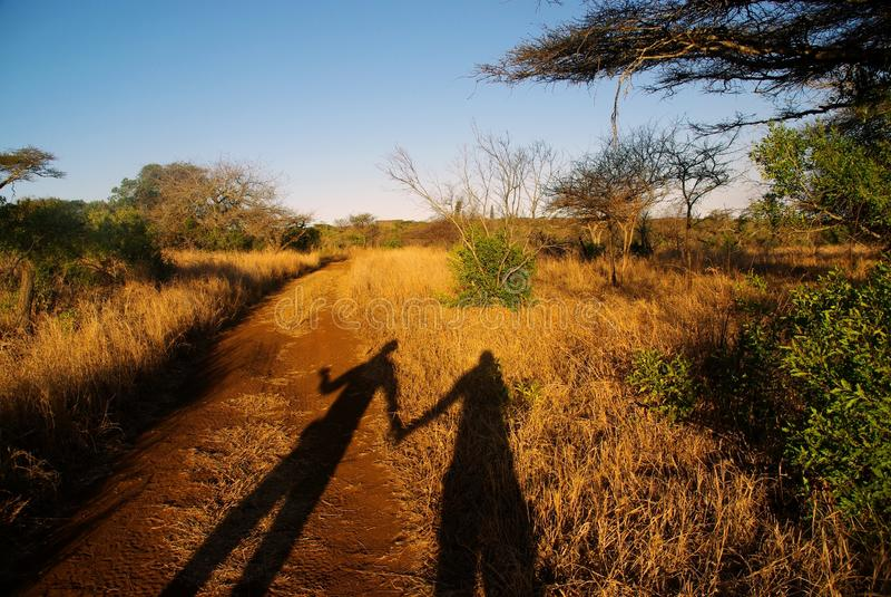Savanna love. Couple walking in the savanna royalty free stock image