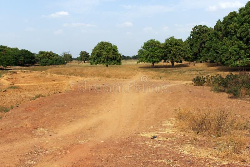 Savannah, Burkina Faso. Dry tropical savanna, Burkina Faso stock photos