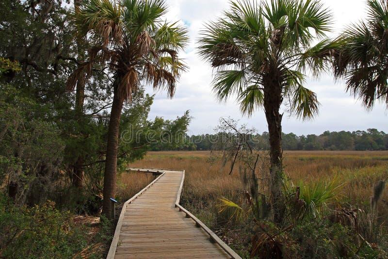 Download Savannah Georgia Marsh stock image. Image of marsh, trail - 7566049
