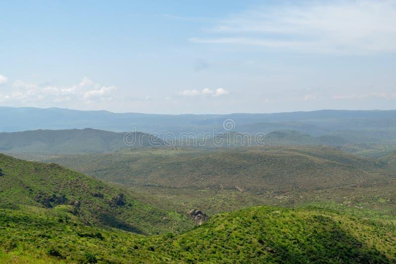 Savannah Grassland en el soporte Ole Sekut en la cordillera de Oloroka, Rift Valley, Kenia imágenes de archivo libres de regalías