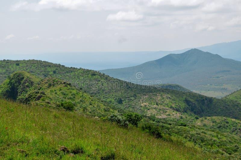 Savannah Grassland en el soporte Ole Sekut en la cordillera de Oloroka, Rift Valley, Kenia fotografía de archivo libre de regalías