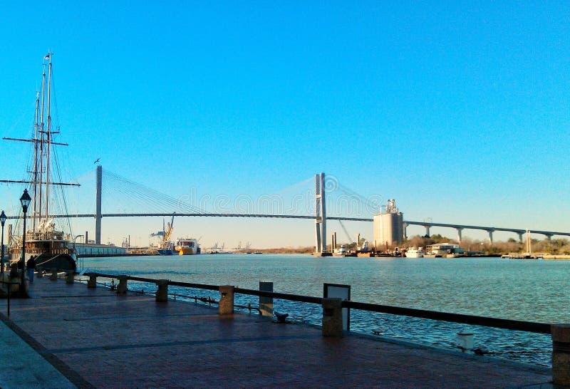 Savannah River lizenzfreies stockfoto