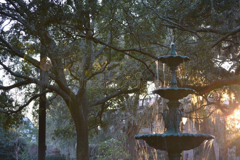 Savannah Squares 2 stockbild
