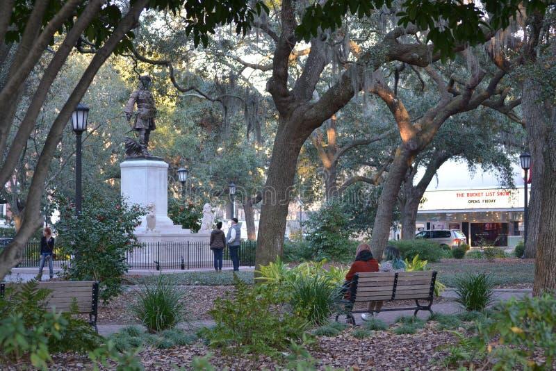 Savannah Squares foto de archivo libre de regalías