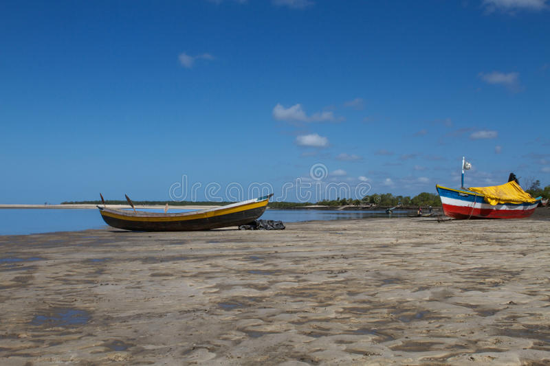 SAVANNE SCAPE IN BEIRA, MOZAMBIQUE, AFRIKA royalty-vrije stock afbeelding