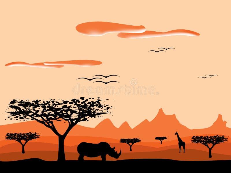 Savannesonnenuntergang in Afrika lizenzfreie abbildung