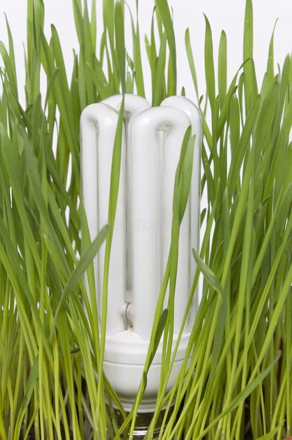 Save Energy Light Bulb Concept Royalty Free Stock Photo