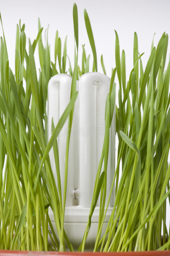 Download Save Energy Light Bulb Concept Stock Photo - Image: 7409258