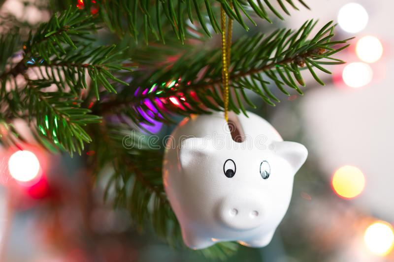 Save money and christmas concept with piggy bank and tree. Closeup stock image