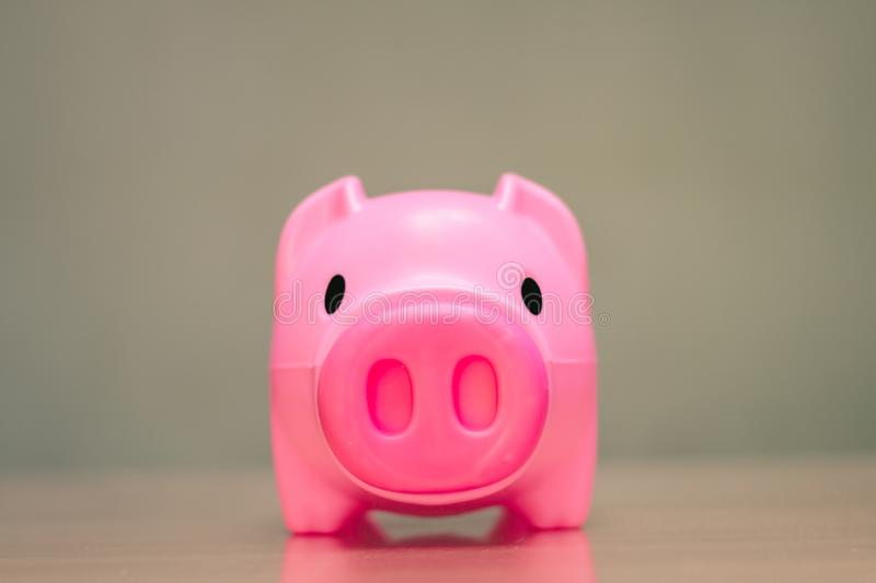 Save money in pig pink for future use. Save money in pig pink for future use, Concept saving money for the future royalty free stock images