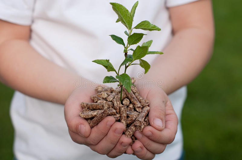 Download Save the Nature stock image. Image of pellet, plant, human - 32379101