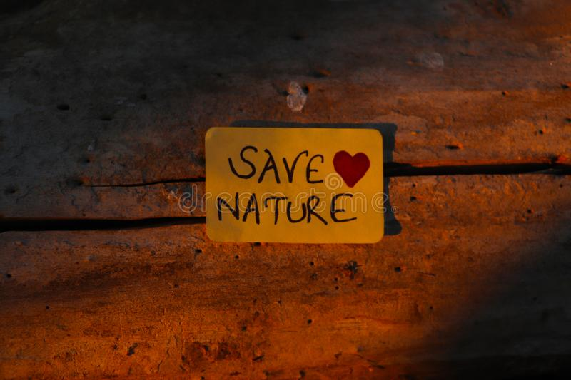 Save Nature paper sign placed on the Bark of a tree. In the evening sunlight royalty free stock images