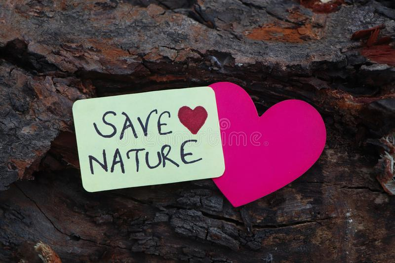 Save Nature paper sign placed on the Bark of a tree. Save Nature paper sign with a heart placed on the Bark of a tree royalty free stock image