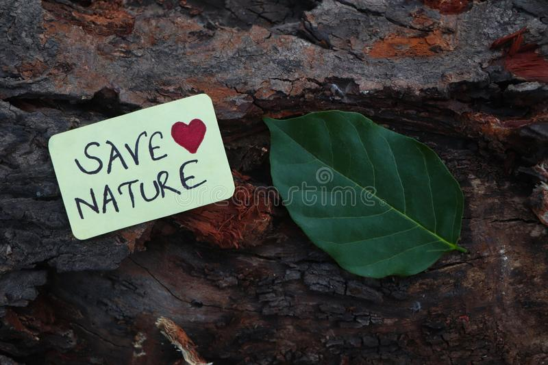 Save Nature paper sign placed on the Bark of a tree. Save Nature paper sign with a leaf placed on the Bark of a tree stock images