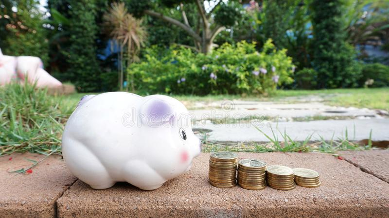 Save. Piggy bank coins travel resort nature wallpaper background saving money cash baht collection transfer payment save account economy economic growth profit royalty free stock images