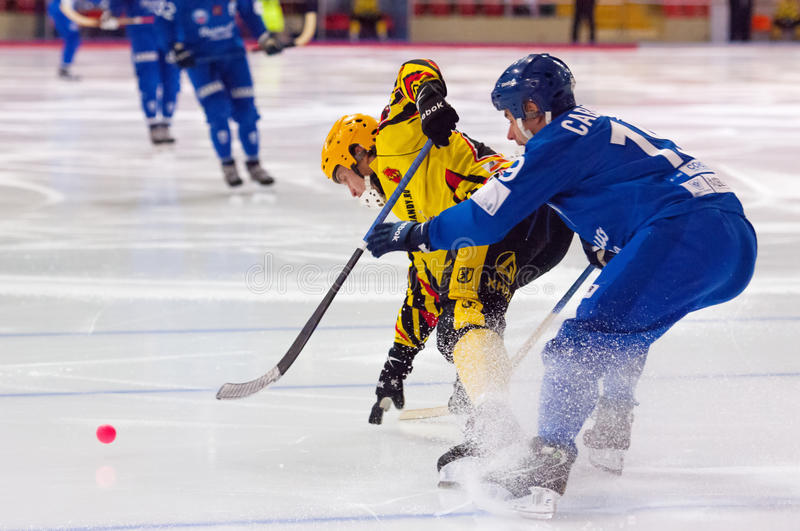Saveliev D. (19) fight royalty free stock photo