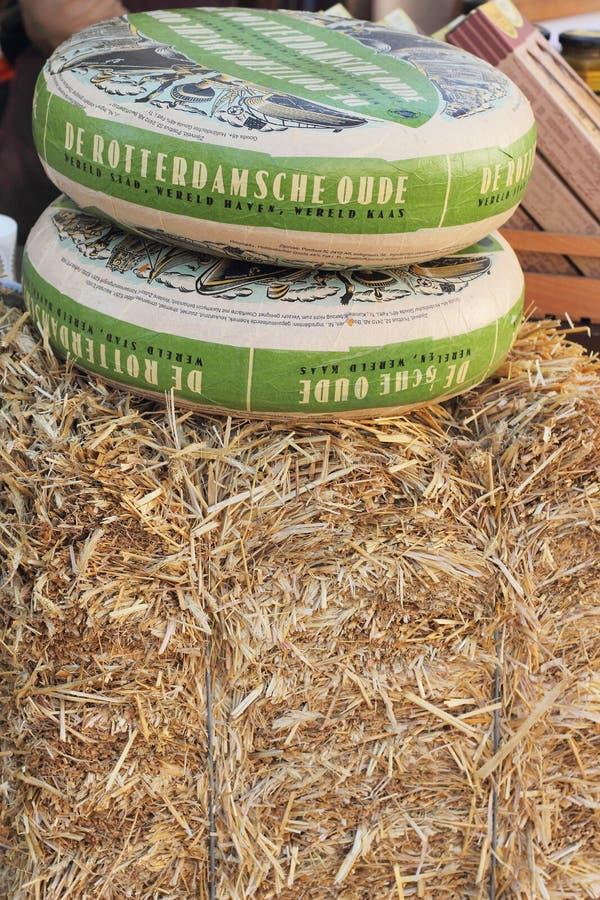 Saveur naturelle de fromage photo libre de droits