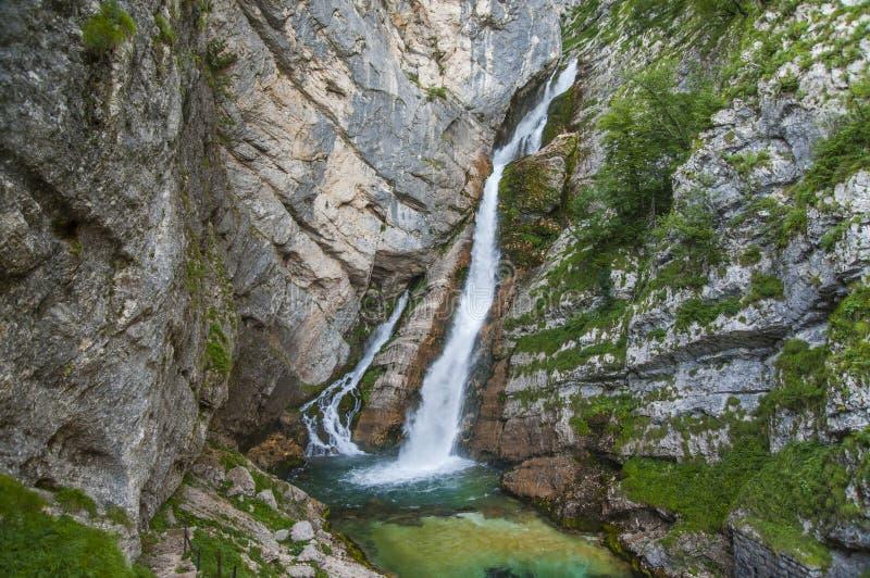Savica vattenfall, Bohinj, Slovenien arkivbilder