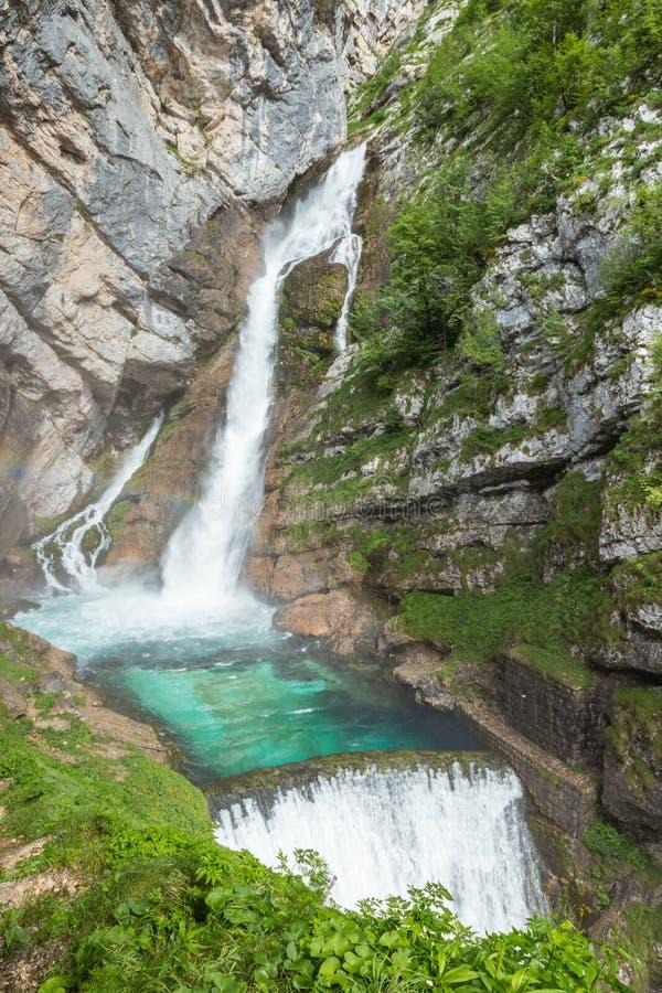Savica vattenfall nära sjön Bohinj, Slovenien arkivfoto