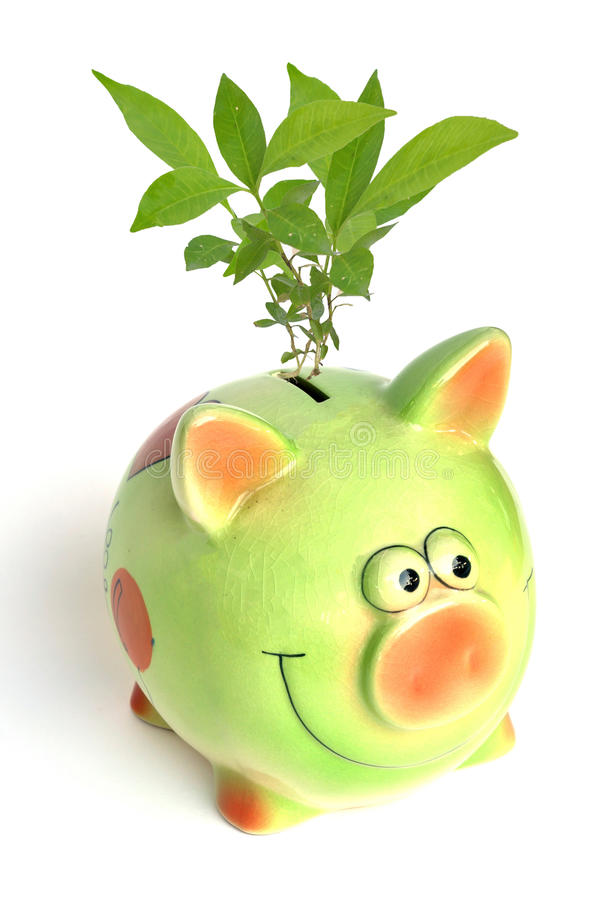 Saving Environment Royalty Free Stock Photo