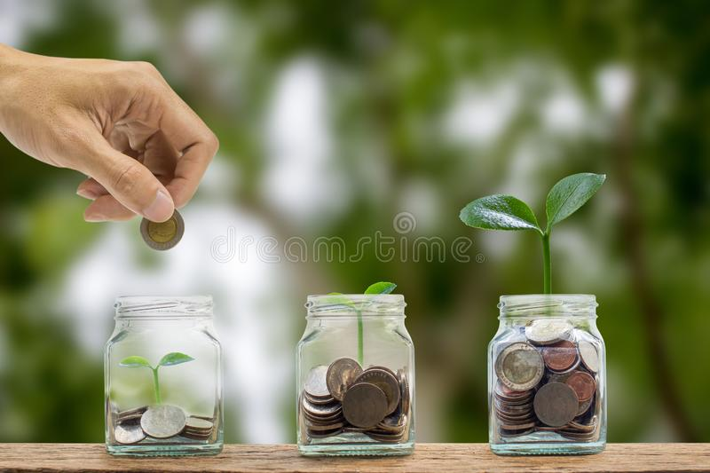 Saving money concept. Business and finance investment. A man hand putting coin into glass bottle containing coins, Growth plant on royalty free stock image