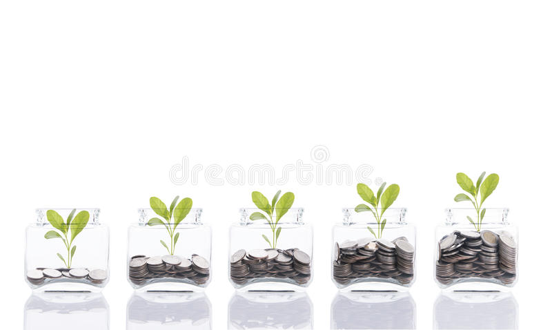 Saving money concept, business hand putting money coin stack growing tree on piggy bank. Saving money concept, business hand putting money coin stack growing stock image