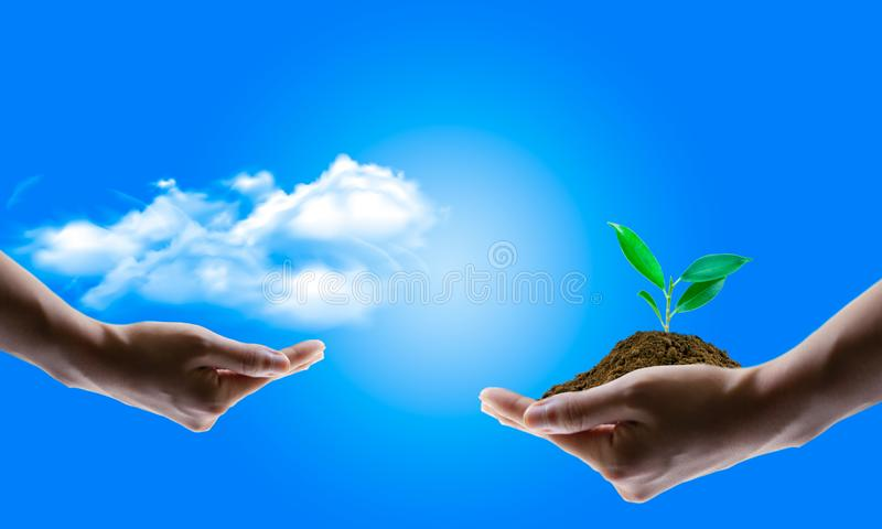 Saving energy concept with earth and tree planting on volunteers royalty free stock photo