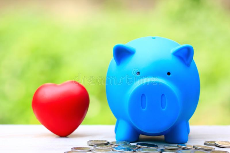Saving money for lover or family and prepare in future concept, Blue piggy bank with red heart on natural green background royalty free stock photo