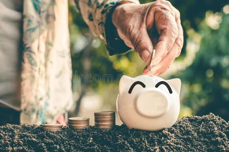 Saving money in pig bank for future use, Concept saving money for the future.  stock image