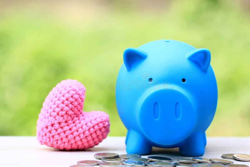 Saving money for prepare in future and investment concept, Blue piggy bank with pink heart on natural green background.  stock images