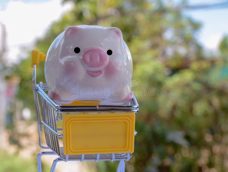 Saving money , save money saving concept. Banking for money saving royalty free stock photo