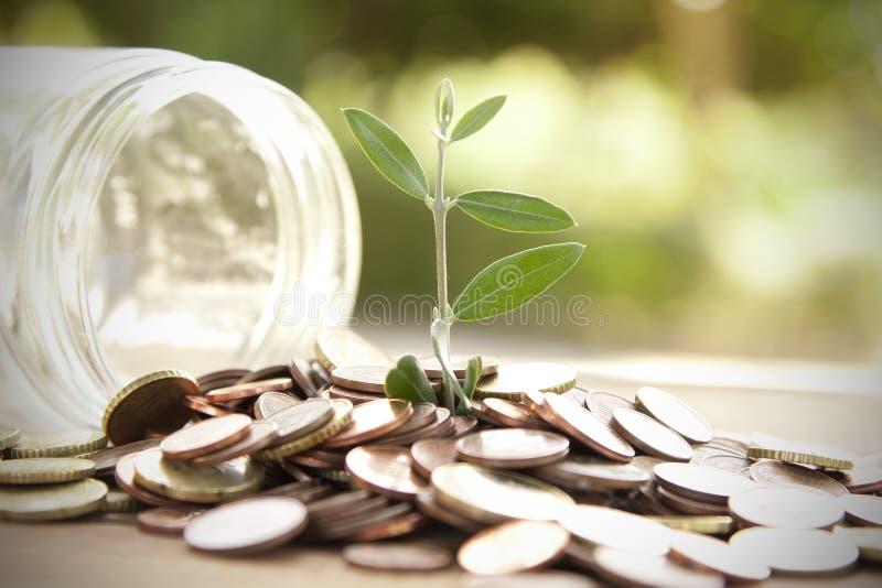 Saving. Pot with coins saving concept stock image