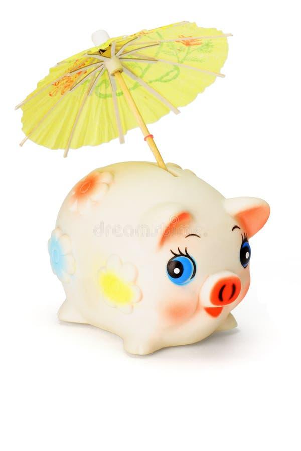 Download Saving for raining days stock photo. Image of piggybank - 17826422