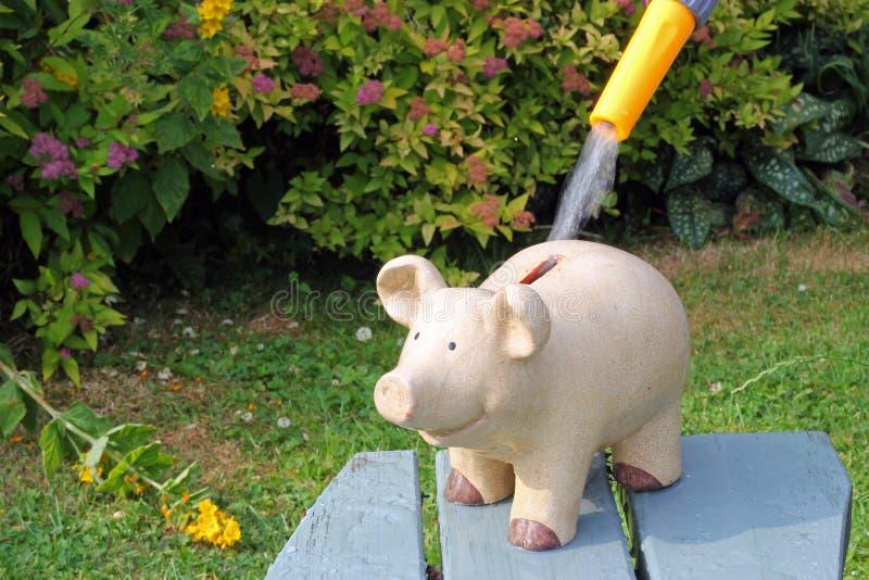 Saving water. Green. stock image