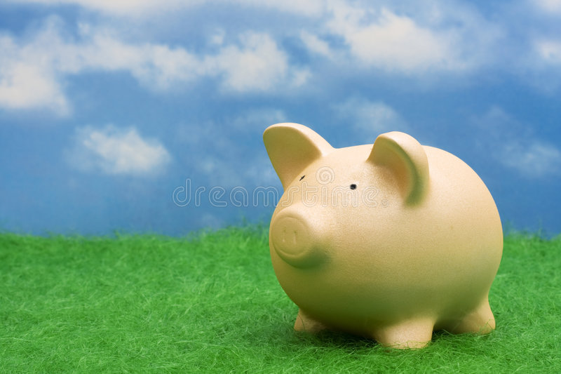 Savings. Coin bank sitting on grass with copy space stock image