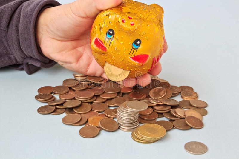 Savings and hoards. The Pig Money bucket and a pile of Coins royalty free stock photography