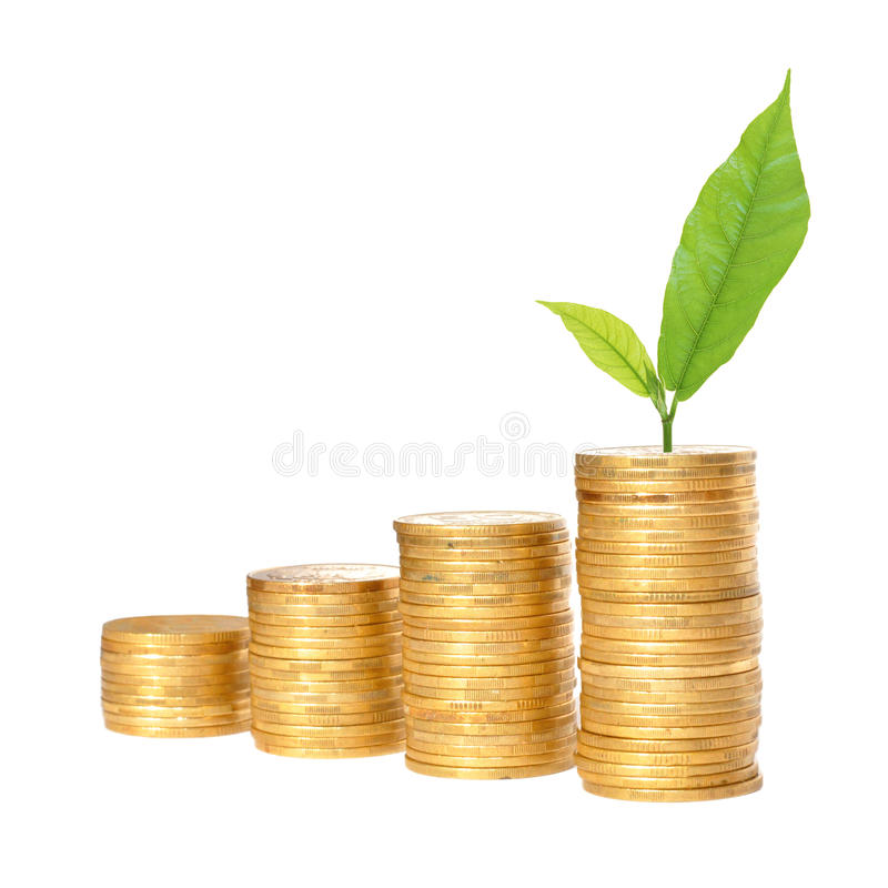 Savings, increasing columns of gold coins and green plant. Isolated on white background royalty free stock photography