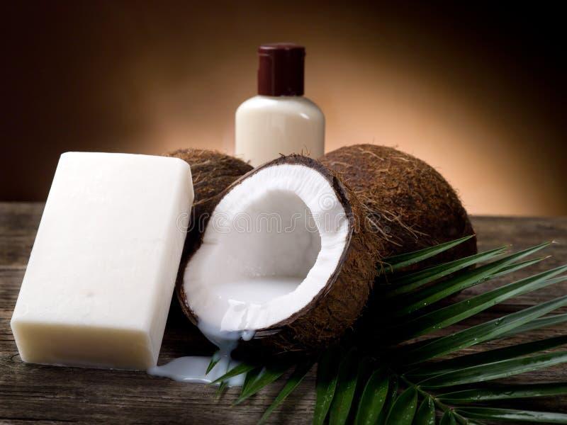 Savon de noix de noix de coco photos libres de droits
